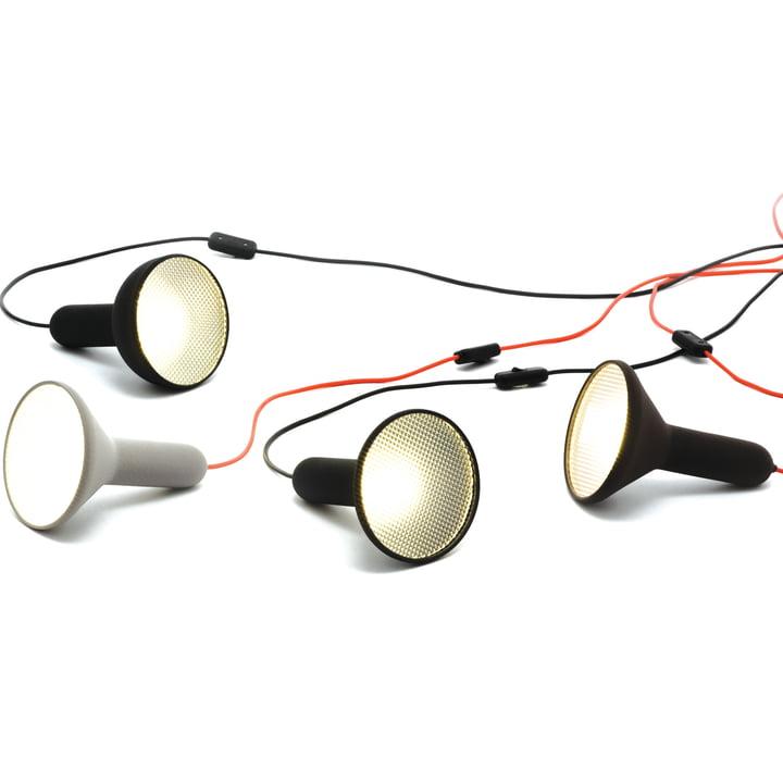 Established & Sons - Torch light, Boden, Gruppe