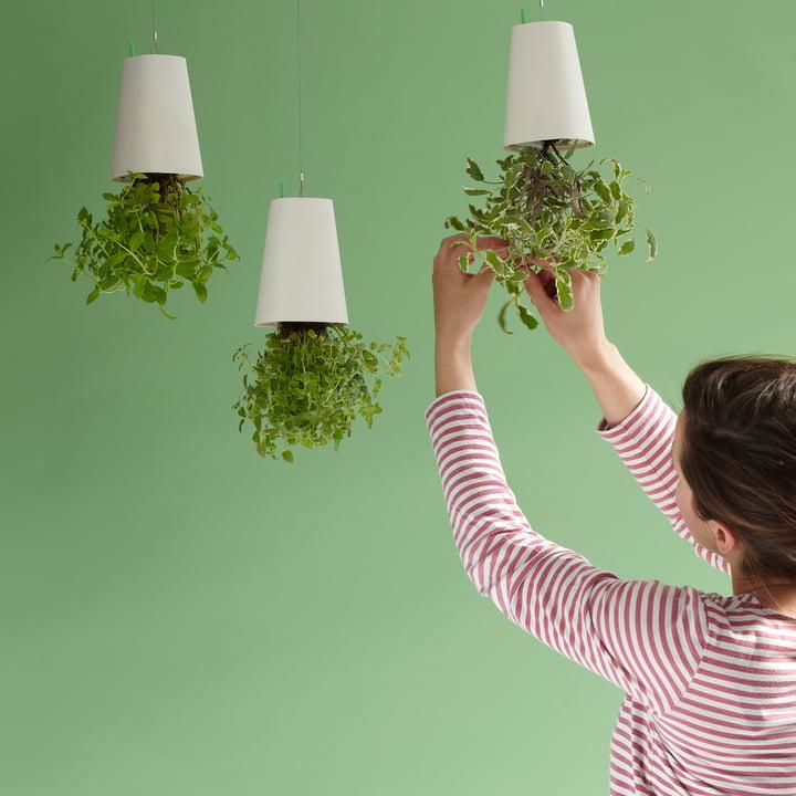 Sky Planter Recycled von Boskke