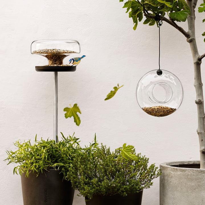 Der Natur näher sein mit dem Eva Solo Bird Table und Futterring