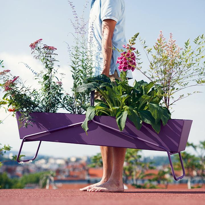 Fermob - Basket Blumenkasten lang, aubergine