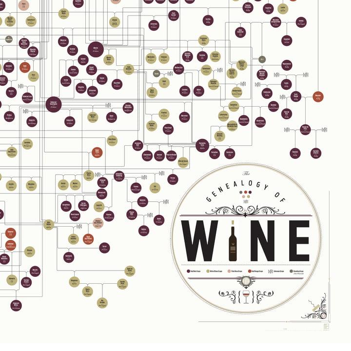The Genealogy of Wine von Pop Chart Lab