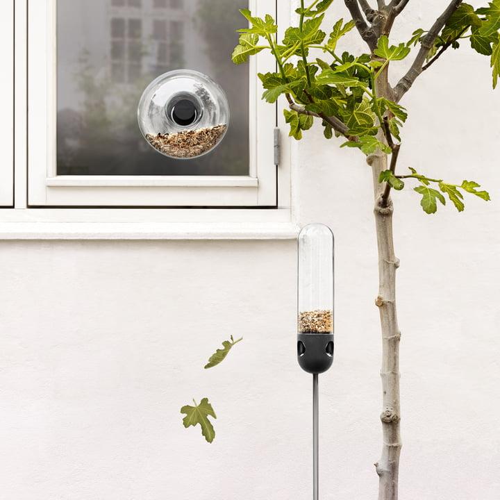 Fenster Vogel Futterstelle und die Vogelfutter-Röhre von Eva Solo
