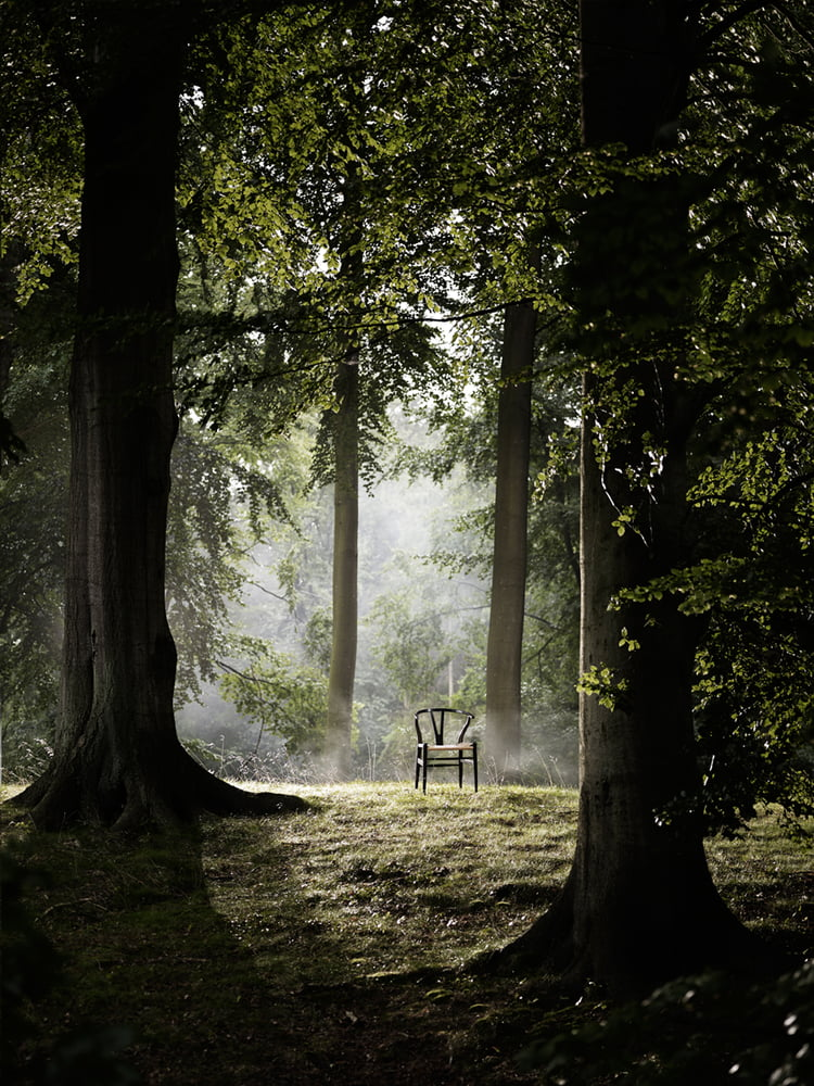 CH24 Wishbone Chair im Wald